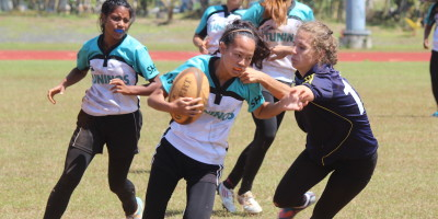 YOUNG DOLPHINS TESTED AND UNPHASED