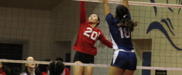 KNIGHTS PUSHED TO THREE THRILLING SETS VERSUS COUGARS