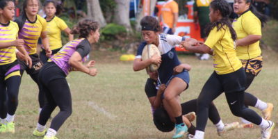 COUGARS GET MONUMENTAL WIN OVER GECKOS