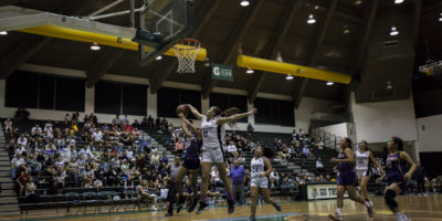 COUGARS FIGHT THROUGH GRITTY GECKOS TO GET INTO FINALS